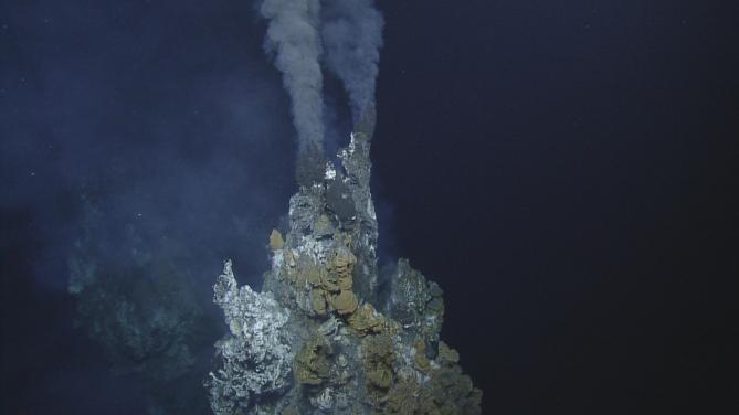 갈라파고스 단층 주변 해저 1660m 지점에 위치한 열수구의 모습 - Charles Darwin Research Station 제공